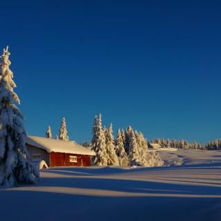 Vinter hytte
