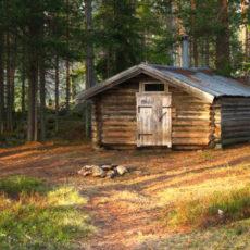 Trekning av jaktkort – hytteeiere