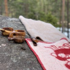 Turtips i Mosjømarka