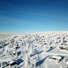 Informasjon om snøbrøyting 2020-2021